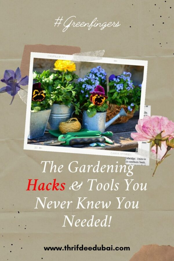 The Gardening Hacks & Tools You Never Knew You Needed!